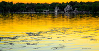 Sunglow, Lake Harriet119263z